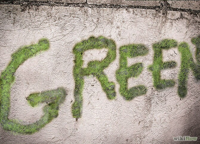 Nom:  670px-Make-Moss-Graffiti-Step-8revised.jpg