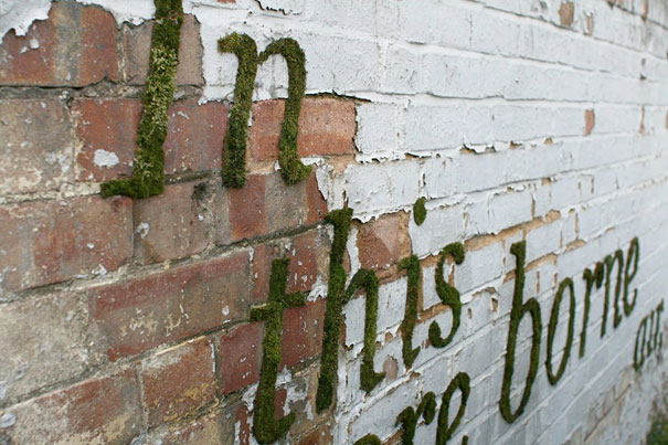 Nom:  moss-graffiti-3.jpg Visites: 117 Mida: 79,0 KB